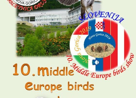 10 middle europe birds show 2019